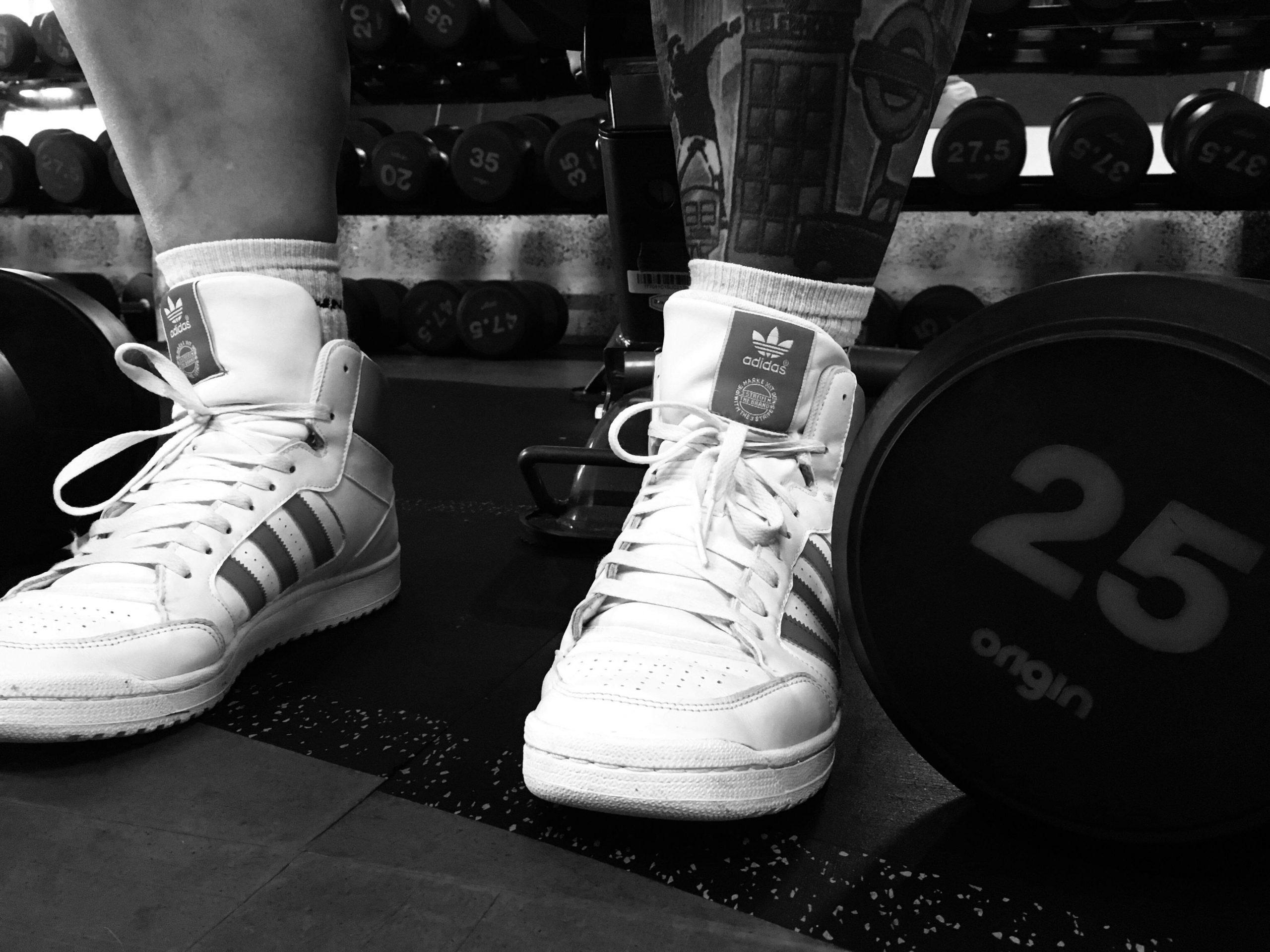 Silverback Gym Tain Highlands